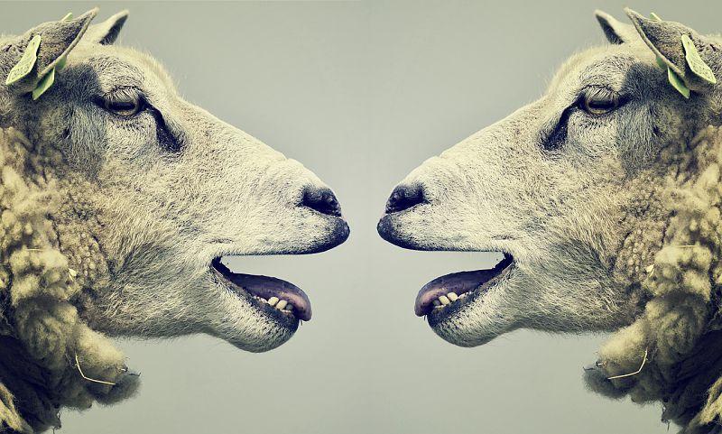 conversational narcissist image