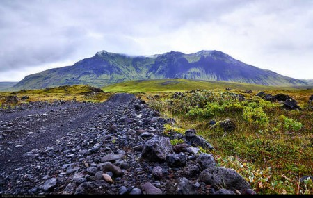 iceland introvert country