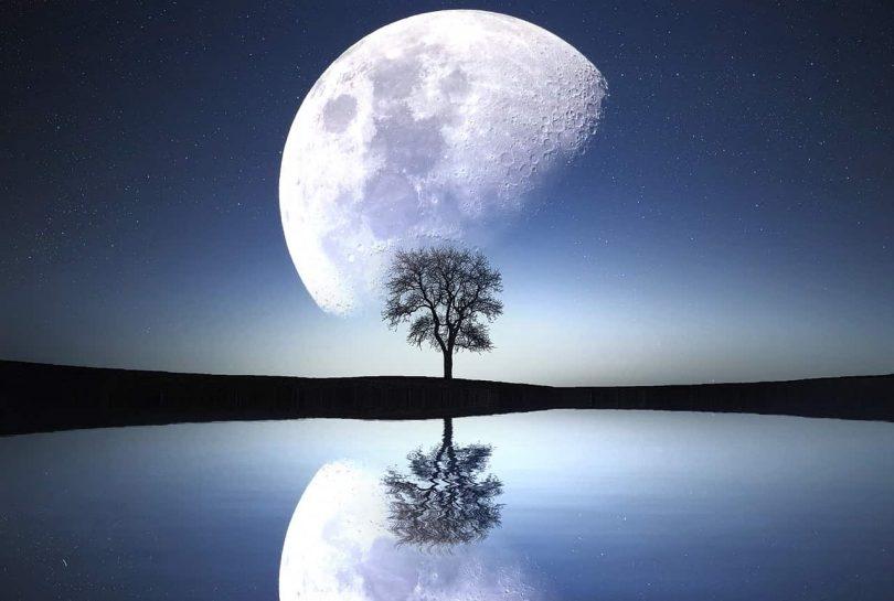 Image of a tree, lake, and moon symbolizing psycho-spirituality