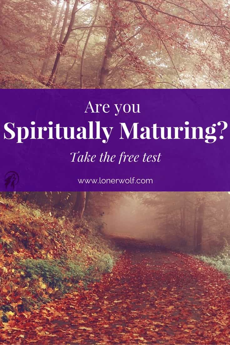 Sometimes it can be hard for us to objectively discover whether we\'re spiritually maturing or not. This free test might help you to understand where you are on your spiritual path.