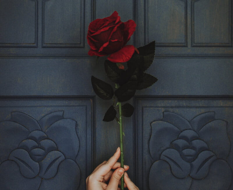 Image of a woman holding a red rose symbolic of self-love