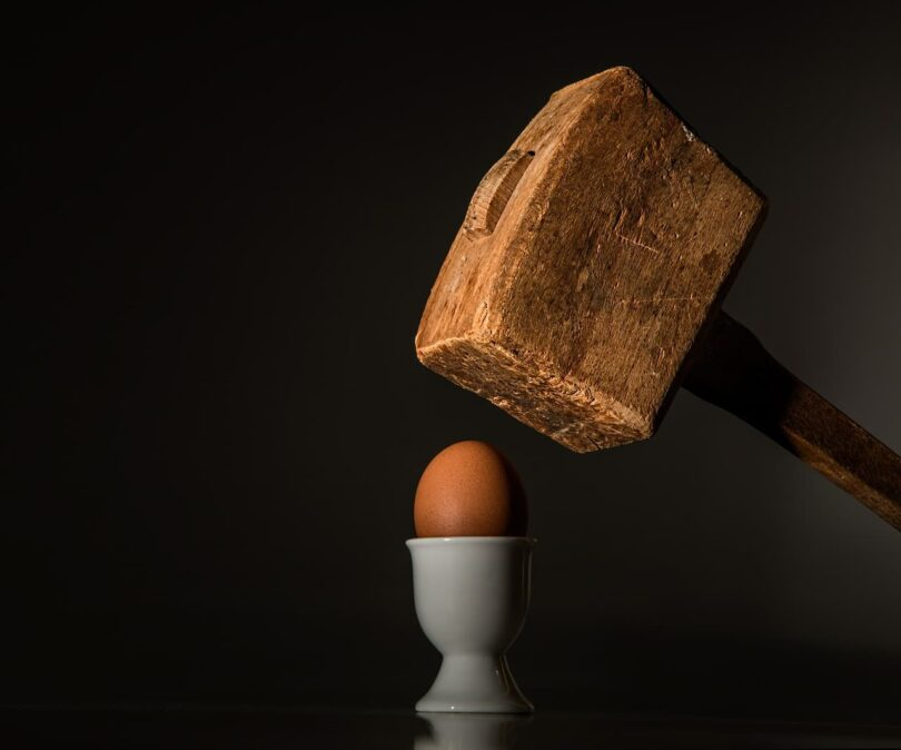 Image of an activist egg about the get smashed