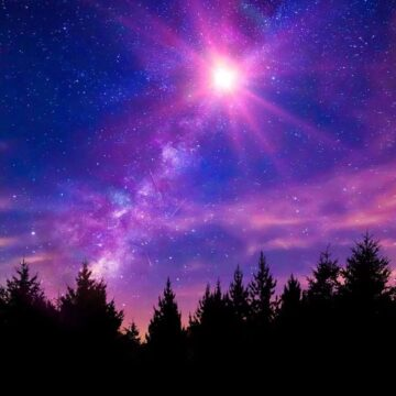 Image of a cosmic forest that symbolizes the law of attraction