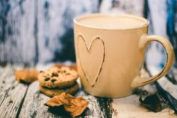 Image of a cup of cocoa and cookies from a person procrastinating