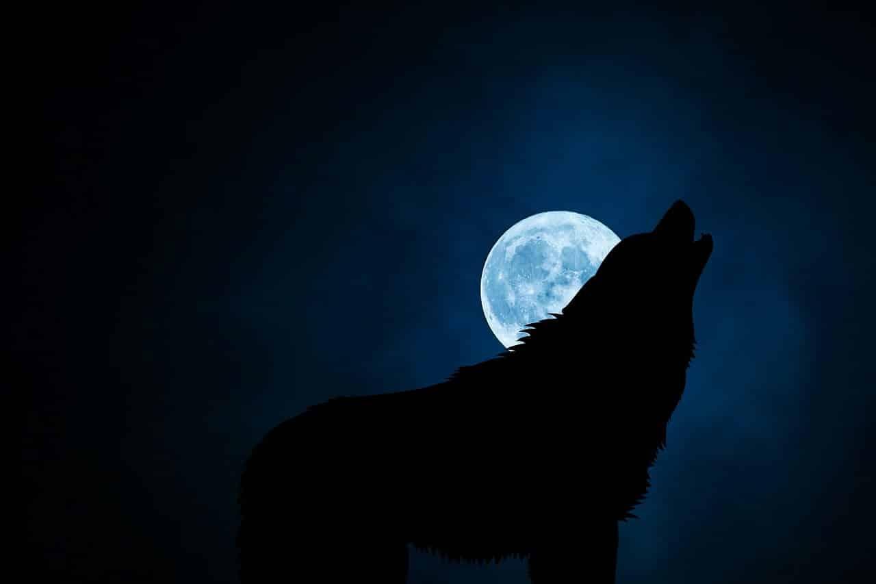 Dark night of the soul image