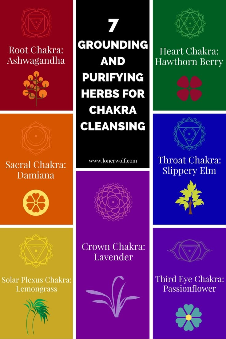 7 Chakra Cleansing Herbs For Empaths and Healers