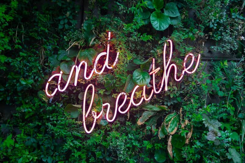 Image of a neon sign that says 'And Breathe'