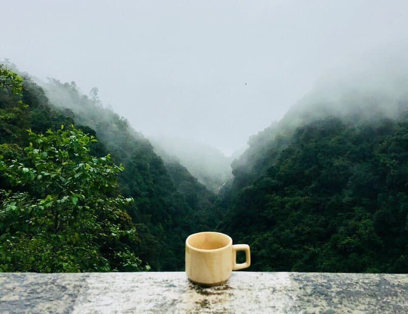 Image of a cup in front of a misty valley