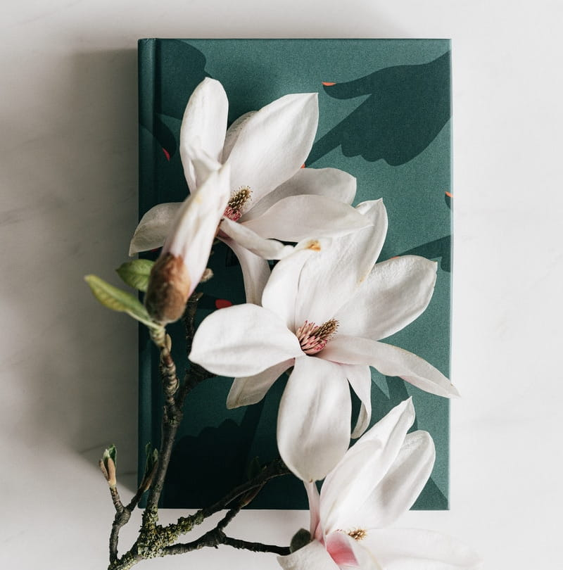 Image of white flowers on top of an automatic writing journal