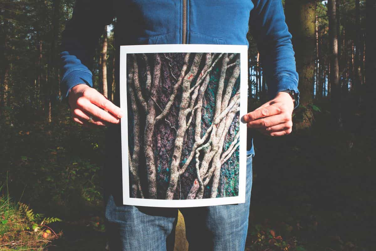 Image of a man holding up a photo of roots symbolic of the root chakra