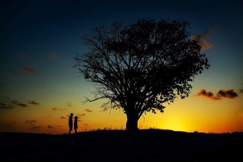 Image of a couple underneath a tree forging a spiritual connection