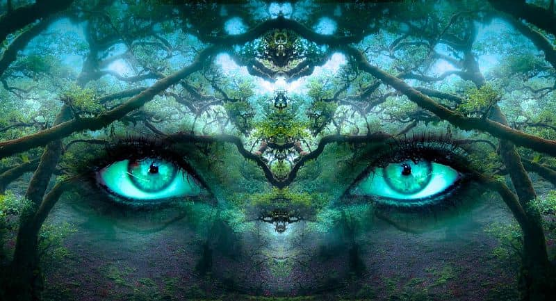 Are You A Mystic or a Shaman? test image