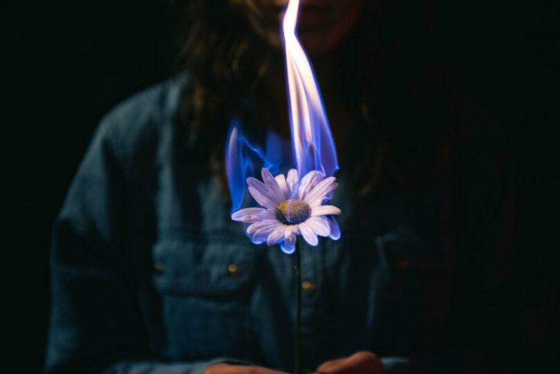 Image of a woman burning a flower symbolic of losing authenticity and becoming a sell out