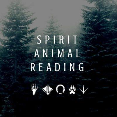 Spirit animal reading image