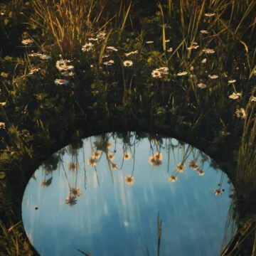Image of a mirror reflecting flowers symbolic of mirror work