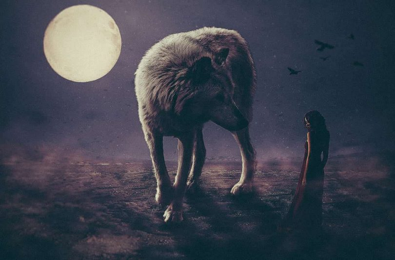 Image of a woman standing with a wolf listening to gut instinct