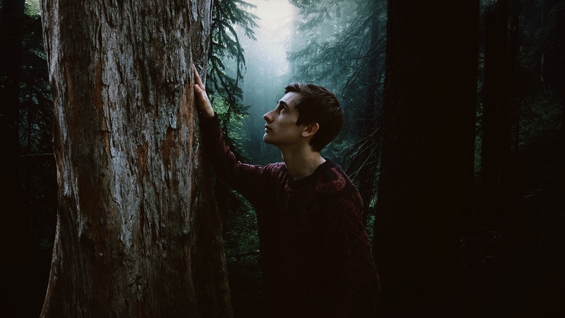 Image of a guy in the forest feeling lost
