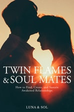 Twin Flame book cover
