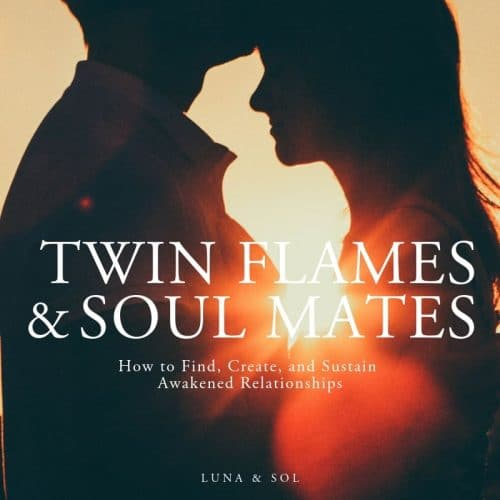 twin flames and soul mates book shop image