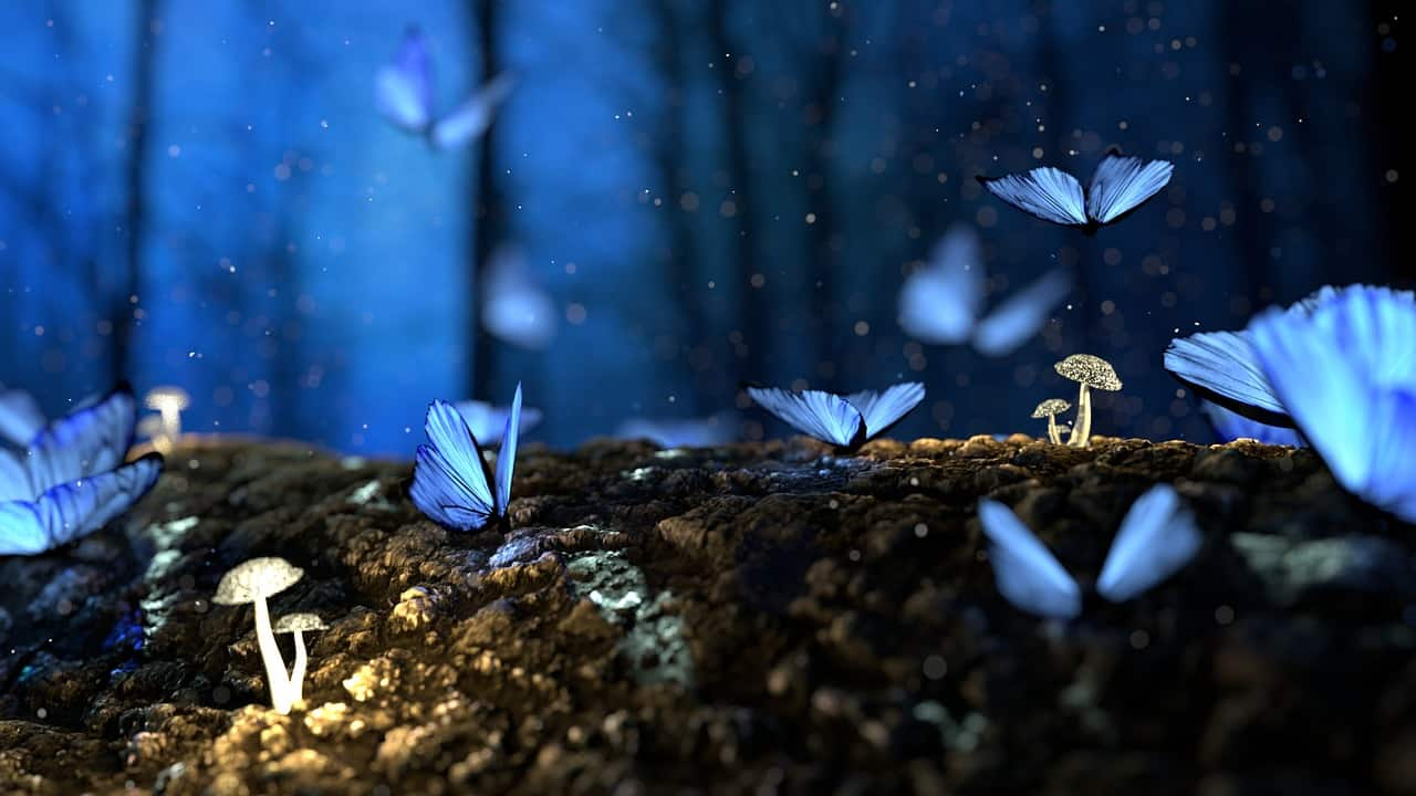 Image of blue butterflies in a lucid dream