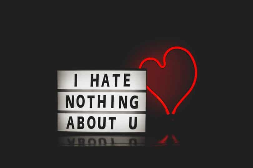 Image of a sign that says I hate nothing about you