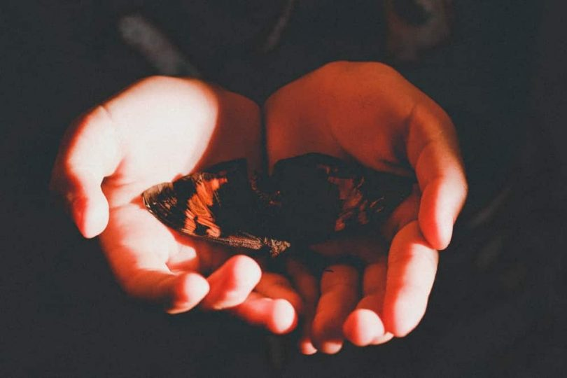 Image of hands holding a butterfly symbolic of the soul