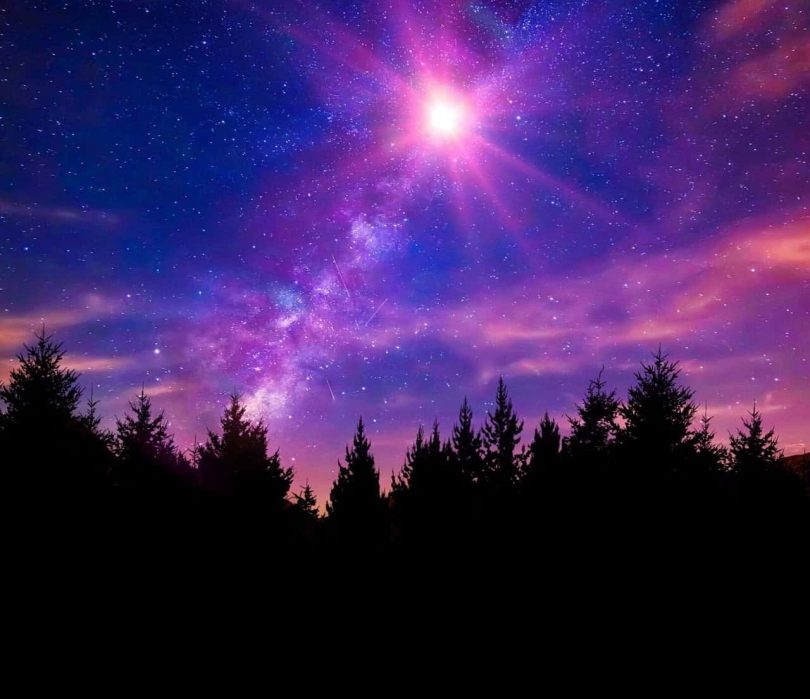 Image of a forest and the colorful night sky