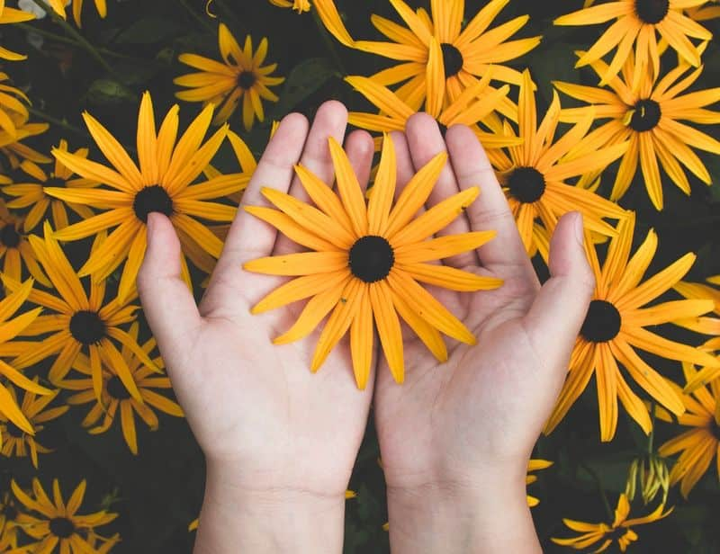 Image of a person holding yellow flowers
