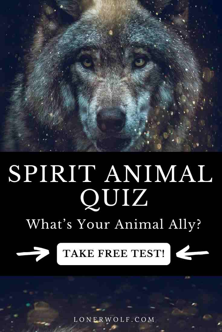 Spirit Animal Quiz: What's Your Animal Ally?