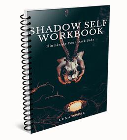 image of shadow self workbook