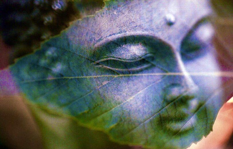 Image of a peaceful bodhisattva