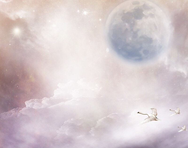 Image of a dreamy sky with swans flying