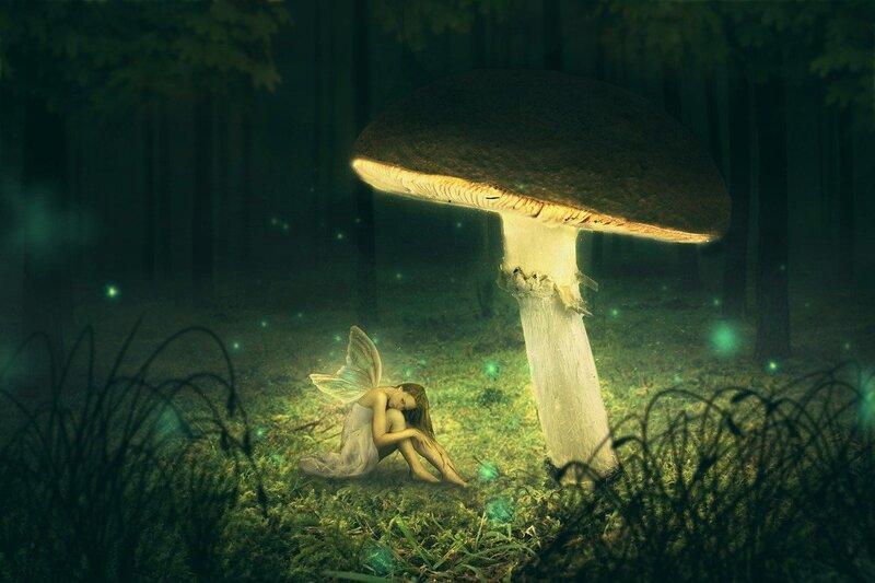 Image of a fairy underneath a mushroom