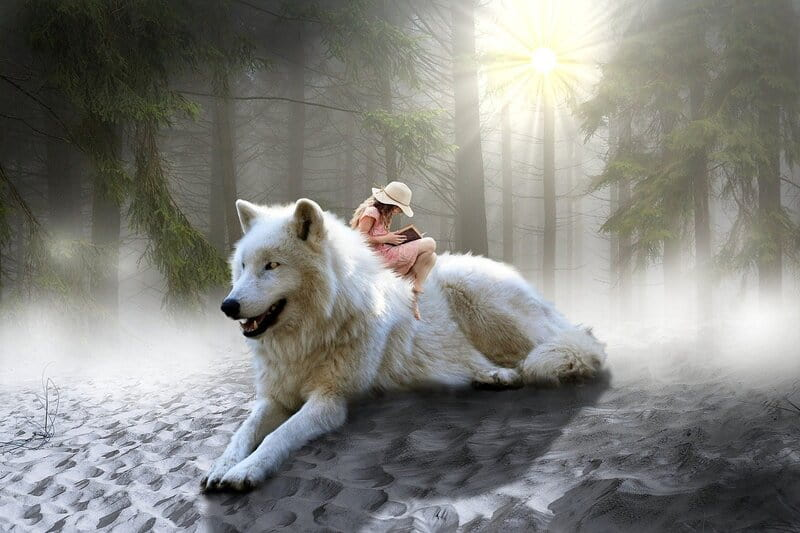 Image of a girl sitting on top of a giant spirit wolf